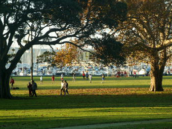 City - Rushcutters Bay